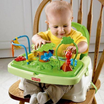 Booster Feeding Seat rentals in Seattle - Cloud of Goods