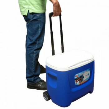 Cooler (28 or 50-quart) rental