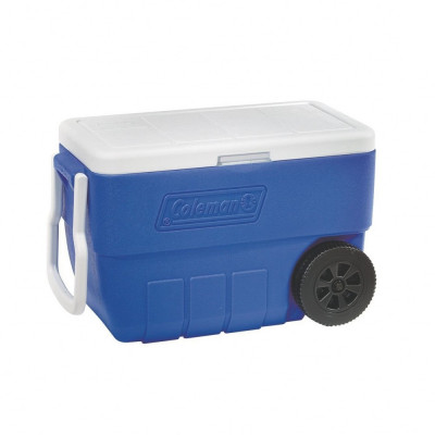 Cooler (28 or 50-quart) rentals in New Orleans - Cloud of Goods