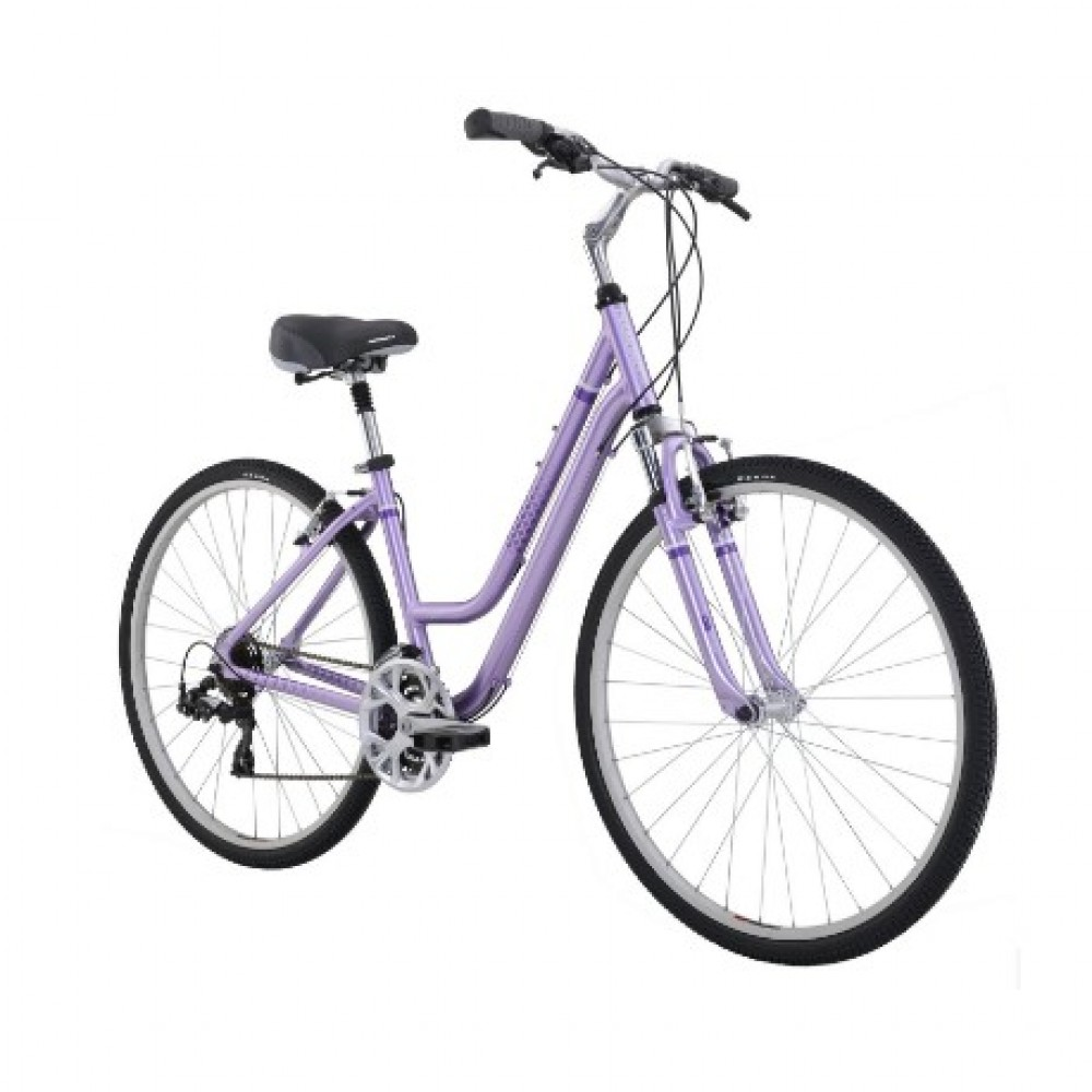 Women's hybrid bike rentals in Tampa - Cloud of Goods